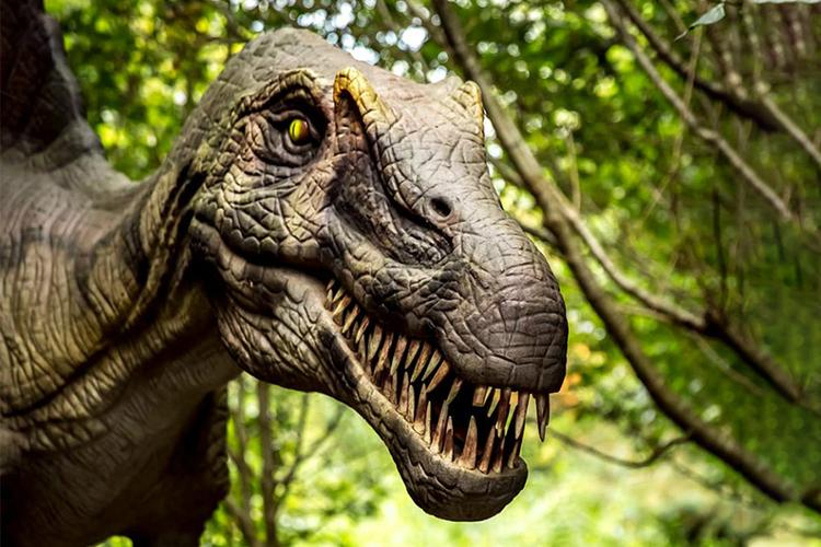 All-inclusive dagje weg DinoPark Tenaxx (2 p.)