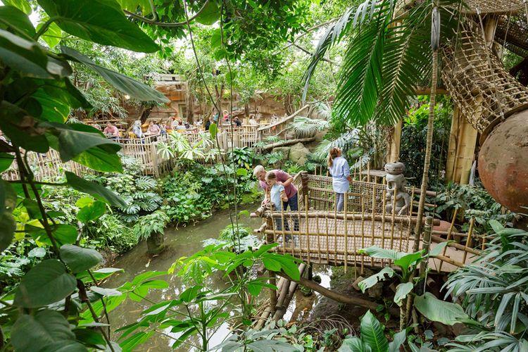 Slapen in de jungle van Center Parcs Het Heijderbos (2p)