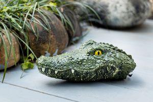 Bestuurbare krokodillenboot