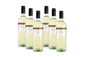 6 flessen witte wijn: Pinot Grigio (750 ml)