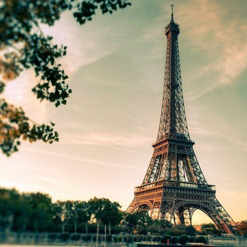 2 dagen Parijs per bus (2 p.)