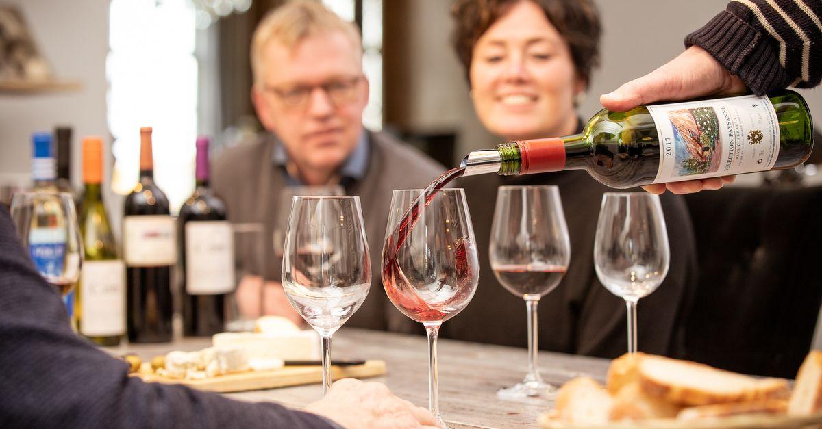 Dégustation de vins à domicile (6 p.)