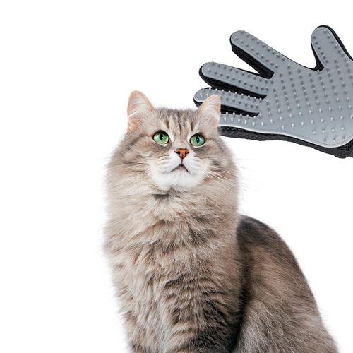 Massageborstel voor huisdieren